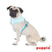 peitoral-puppia-aggie-aqua3