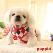 peitoral-puppia-argyle-vermelho3