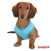 peitoral-puppia-dotty-azul3