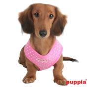 peitoral-puppia-dotty-rosa3