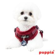 peitoral-puppia-troy-bordeaux3