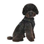 peitoral puppia gia preto cão