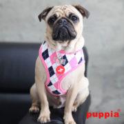 peitoral-puppia-argyle-rosa3