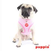 peitoral-puppia-beach-party-rosa3
