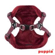 peitoral-puppia-troy-bordeaux2