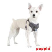 peitoral-puppia-troy-cinzento3