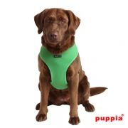 soft harness verde