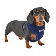 peitoral puppia classy azul cão