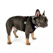 peitoral puppia prancer preto4-570x570