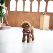 peitoral puppia rowdy vermelho3