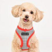 Peitoral Puppia Blake Vermelho cão
