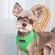 Peitoral Puppia Bonnie Verde cão